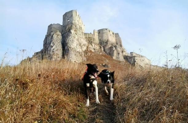 Audio - Spissky hrad 01 11 BRALO